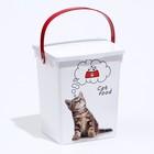 контейнеры для корма кошек