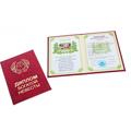сувенирные дипломы-приколы от российских поставщиков
