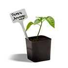 Маркеры для растений, таблички, ярлыки
