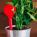 автополив для растений