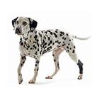 все для ветеринарных лечебниц