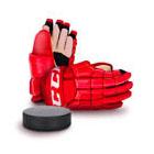 товары для хоккея