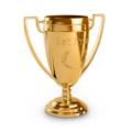 Спортивные награды