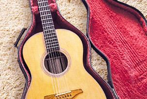 Утеплённые чехлы для музыкальных инструментов