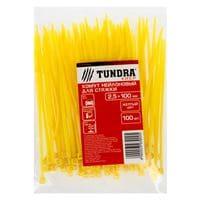 Хомут нейлоновый TUNDRA krep, для стяжки, 2.5х100 мм, цвет желтый, в упаковке 100 шт
