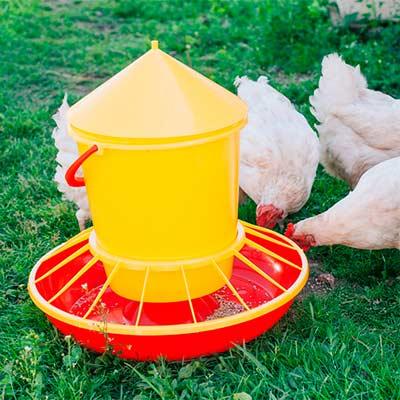 Кормушка бункерная для домашней птицы на 12 кг