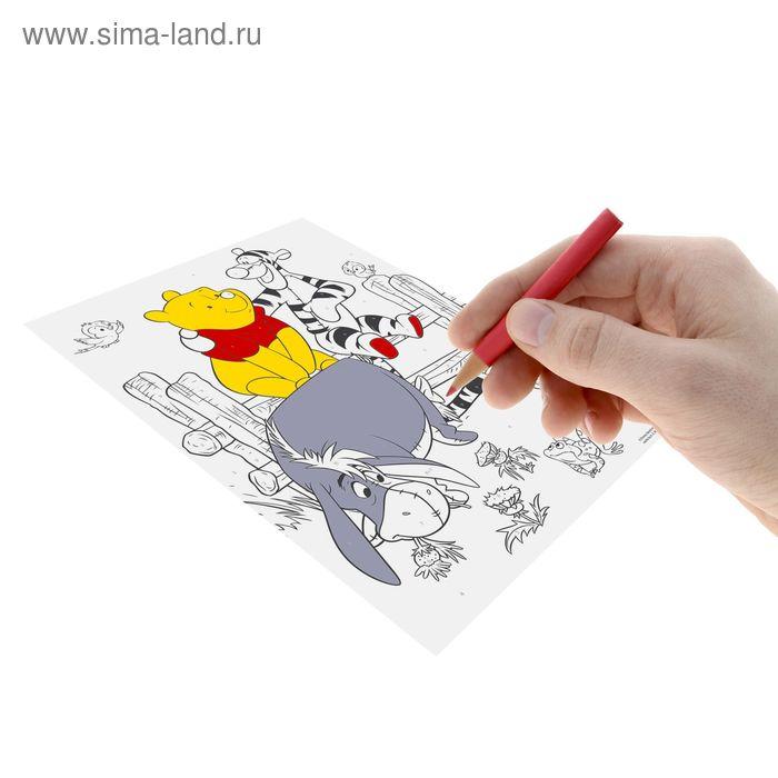 """Роспись """"Медвежонок Винни"""" по номерам (набор 10 цв. карандашей, точилка, игра """"Угадай кто?""""), Медвежонок Винни и его друзья"""