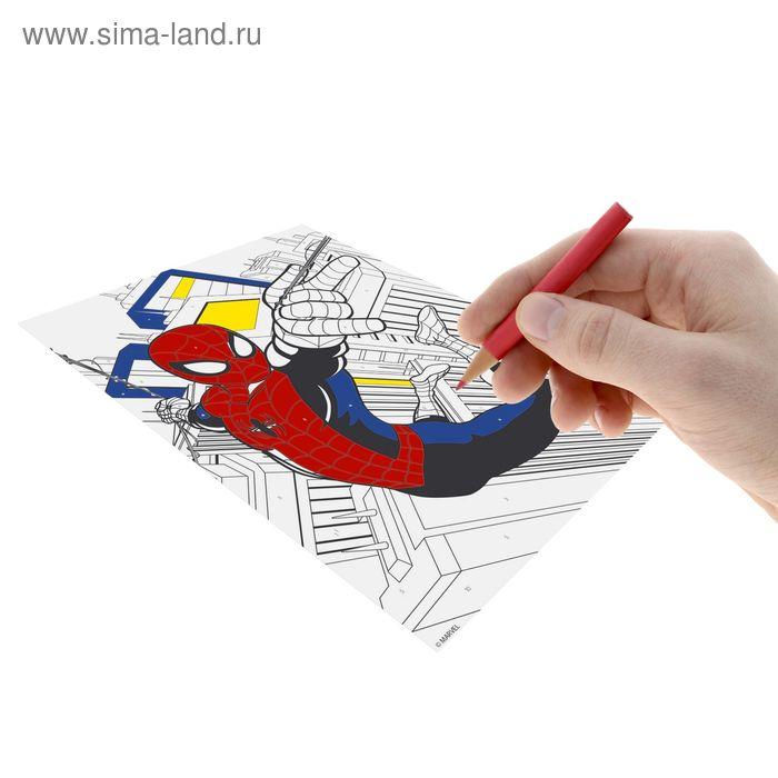 """Роспись """"Человек-Паук"""" по номерам карандашами (набор 10 цв. карандашей + точилка + игра """"Угадай кто?""""), Человек-Паук"""