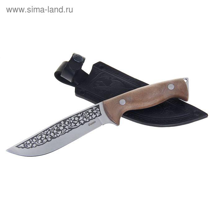 """Нож туристический """"Фазан"""" - 50231, сталь AUS8, г. Кизляр"""
