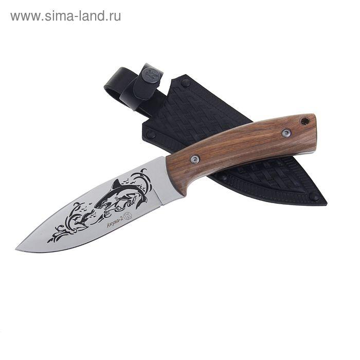 """Нож туристический """"Акула-2"""" - 50631, сталь AUS8, г. Кизляр"""