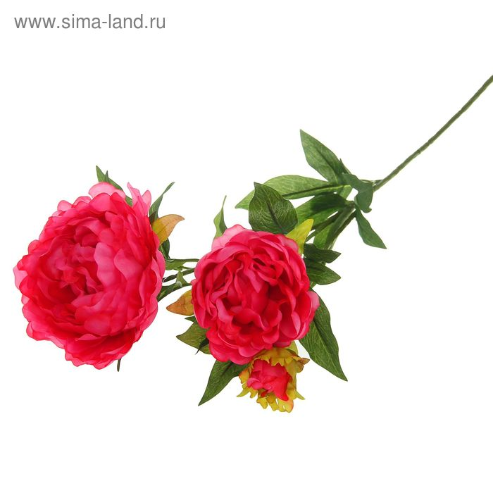 Цветы искусственные Королевский пион 72 см розовый