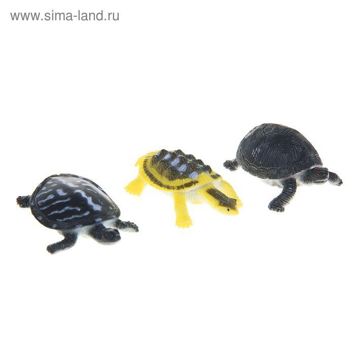 Набор для аквариума из 3 черепах, микс видов