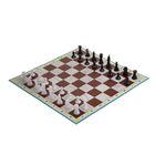 Игра настольная 3 в 1: нарды, шахматы и шашки, составное поле 28 × 28 см