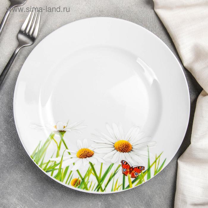 """Тарелка 24 см мелкая """"Ромашка"""""""