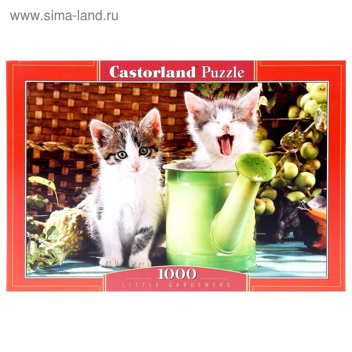 """Пазлы """"Котята"""" 1000 эл C-102105"""