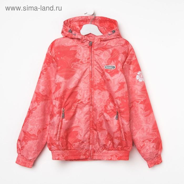 Куртка для девочки, рост 140-146 см (76), цвет коралл ТФ 32008/2 ТР