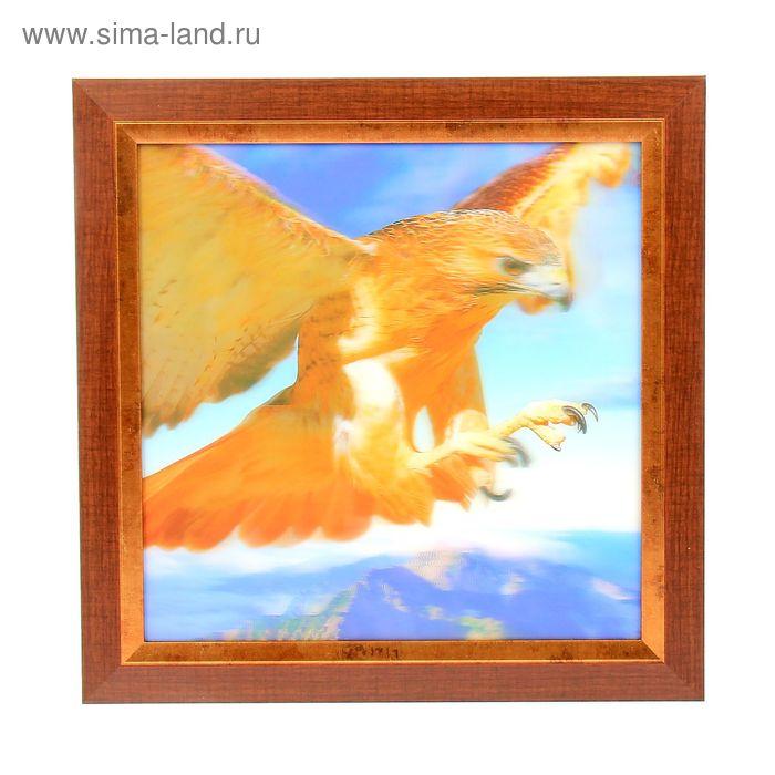 "Аптечка ""Парящий орел"""