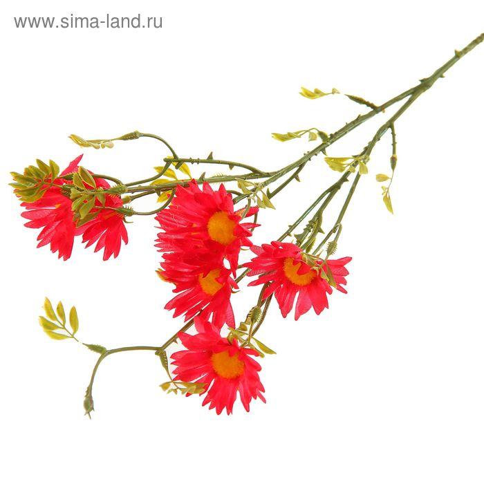 """Цветы искусственные """"Ромашка Пиретрум"""" розовая"""