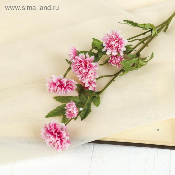 """Цветы искусственные """"Астра кустовая"""" розовая"""
