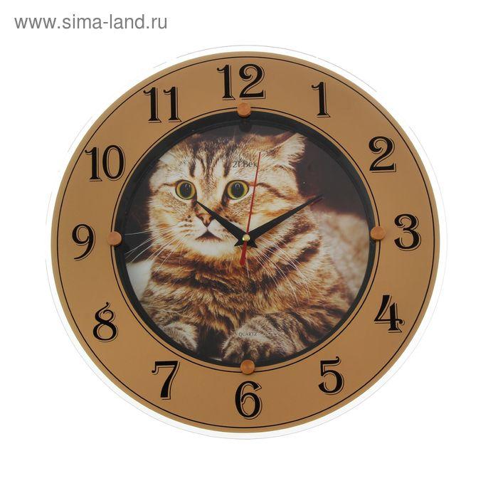 "Часы стеклянные круглые ""Удивленный кот"", цифры на кольце, 32х32 см"