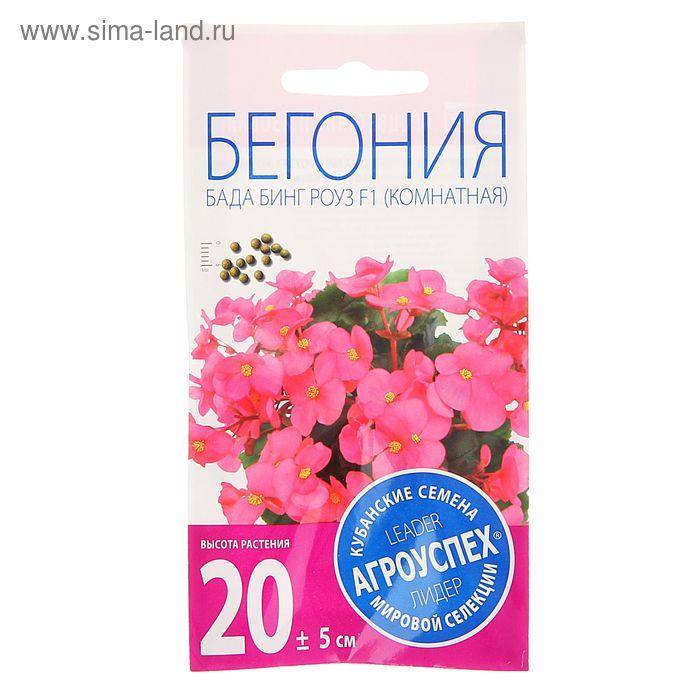 Семена цветов Бегония Бада Бинг Роуз, вечноцветущая, 10 шт