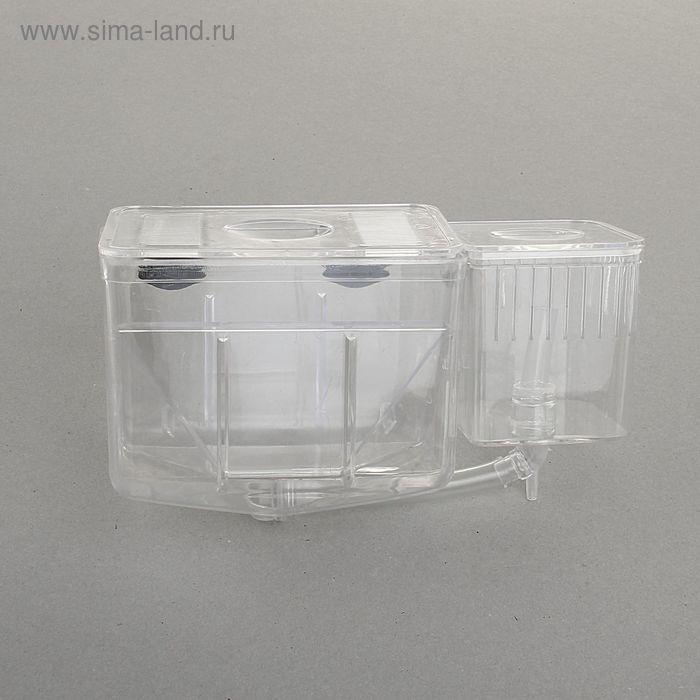 Отсадник-инкубатор для рыб на присосках, 20 х 10 х 12 см