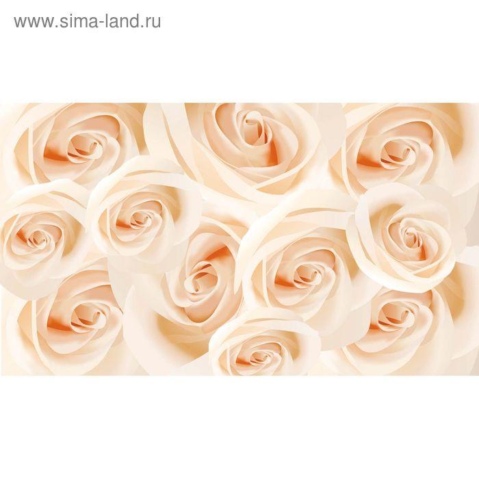 """Фотообои """"Розы"""" 2-А-206, 350х150 см"""