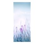 "Фотообои ""Цветы"" D-044, 95х220 см"