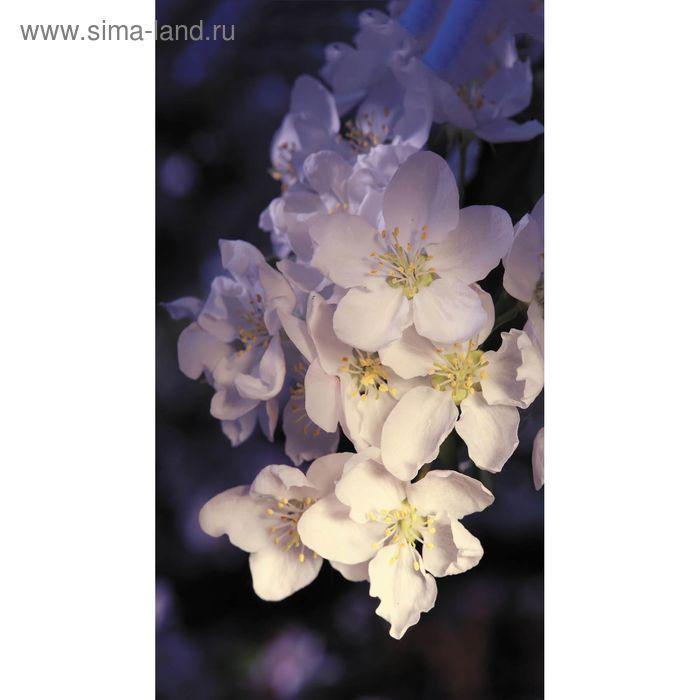 "Фотообои ""Цветущая яблоня"" 1-А-122, 150х270 см"