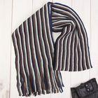 """Шарф мужской """"Париж"""", цвет синий ,18*160 см, 100% полиэстер, акрил"""