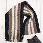 """Шарф мужской """"Амстердам"""", цвет черно-серый,18*160 см, 100% полиэстер , акрил"""