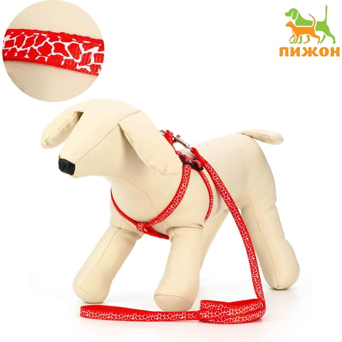 """Комплект """"Жираф"""", ширина 1 см, поводок 120 см, шлейка 26-41 см, красный"""