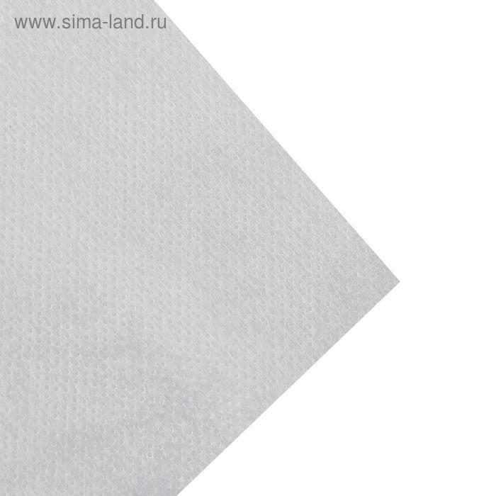 Флизелин клеевой точечный, 42,5г/кв.м, 100х100см, цвет белый