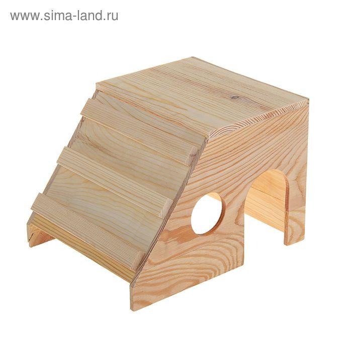 Домик со скатом в виде лесенки для грызунов, дерево, 20х12х12 см
