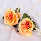 Набор персиковых роз для украшения свадебного авто