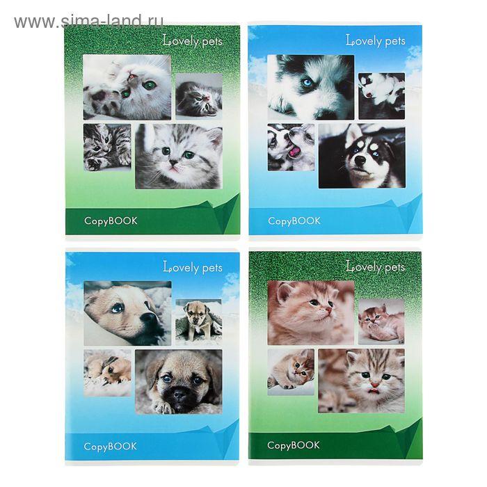 Тетрадь 48 листов линейка Lovely Pets, картонная обложка, глянцевая ламинация, МИКС