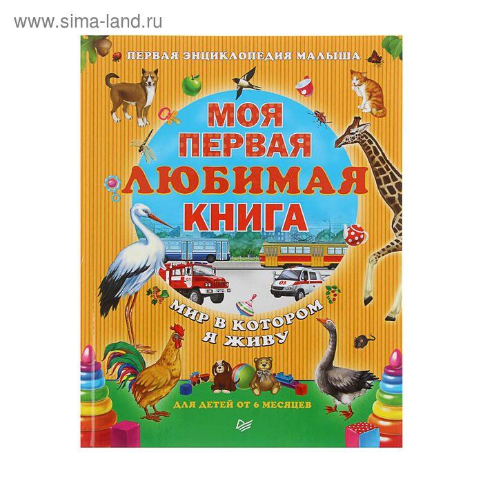 Моя первая любимая книга. Мир в котором я живу. Автор: Шапошникова Т.Е.