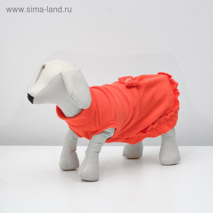 Платье флисовое, S (дс-24 см, ош-26 см, ог-32 см), микс
