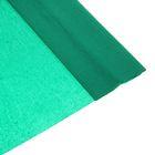 Бумага крепированная 50*250см 32 г/м Зеленая в рулоне Школа талантов (80-10)