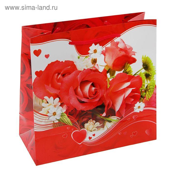 """Пакет подарочный """"Алый цвет"""" 23х22,5х10 см"""