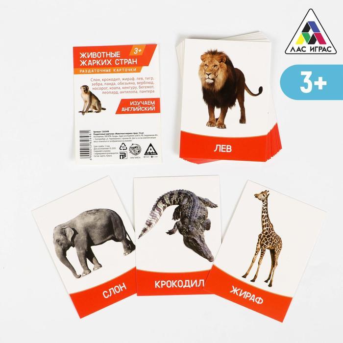 """Обучающие карточки """"Животные жарких стран"""" 16 шт."""