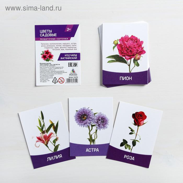 """Обучающие карточки """"Цветы садовые"""" 16 шт."""