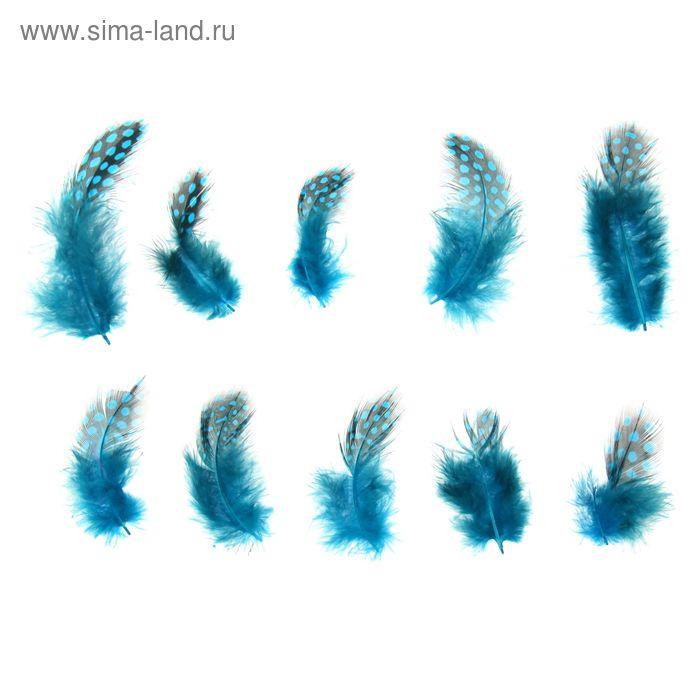Набор перьев для декора 10 шт, размер 1 шт 5*2 цвет бирюзовый с черным