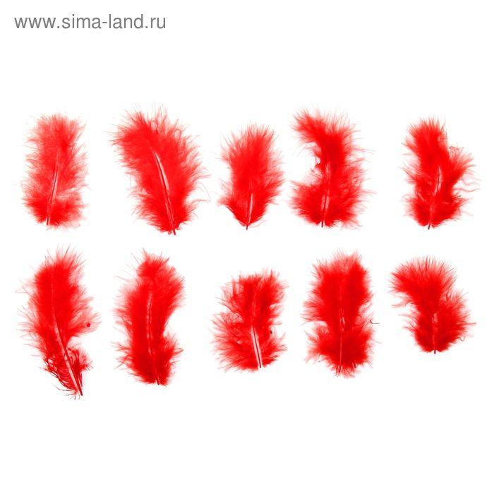 Набор перьев для декора 10 шт, размер 1 шт 10*2 цвет красный