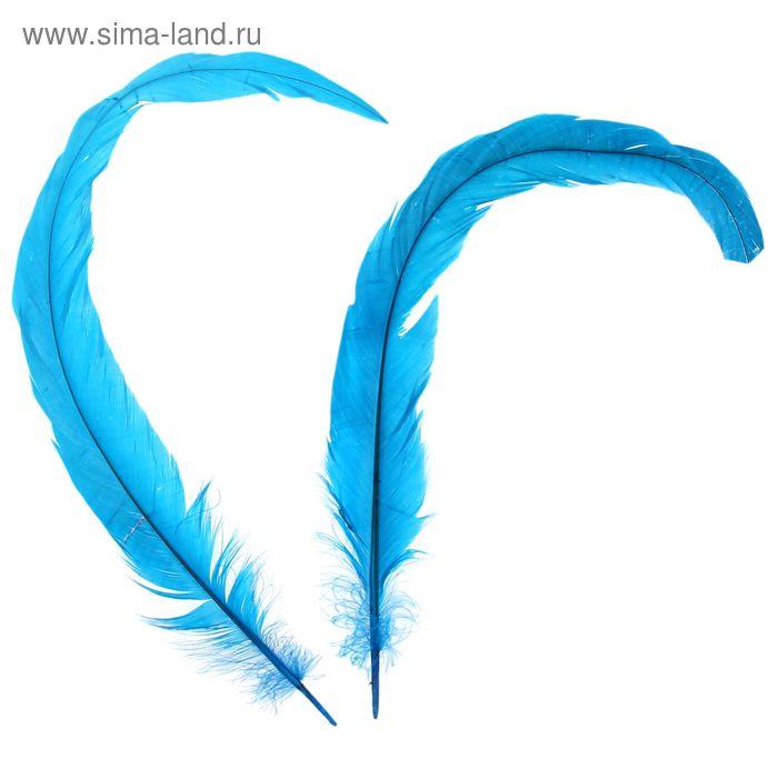 Набор перьев для декора 2 шт, размер 1 шт 30*3 цвет бирюзовый