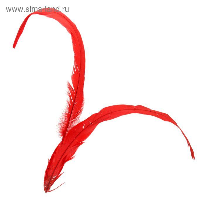 Набор перьев для декора 2 шт, размер 1 шт 30*3 цвет красный