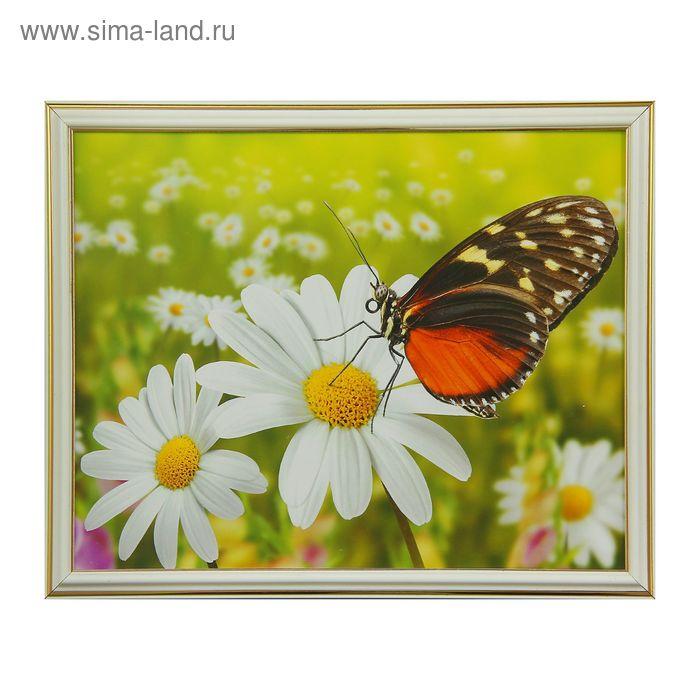 """Картина """"Бабочка на ромашке"""""""