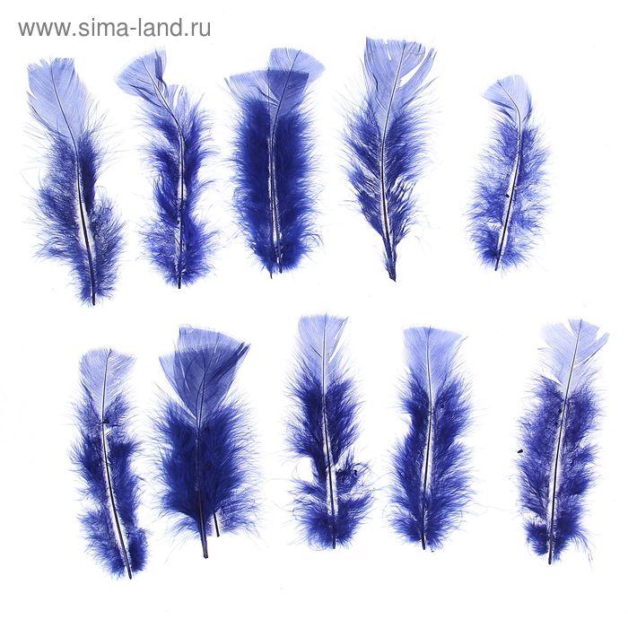 Набор перьев для декора 10 шт, размер 1 шт 16*4 цвет темно синий