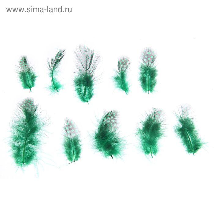 Набор перьев для декора 10 шт, размер 1 шт 5*2 цвет зеленый с черным
