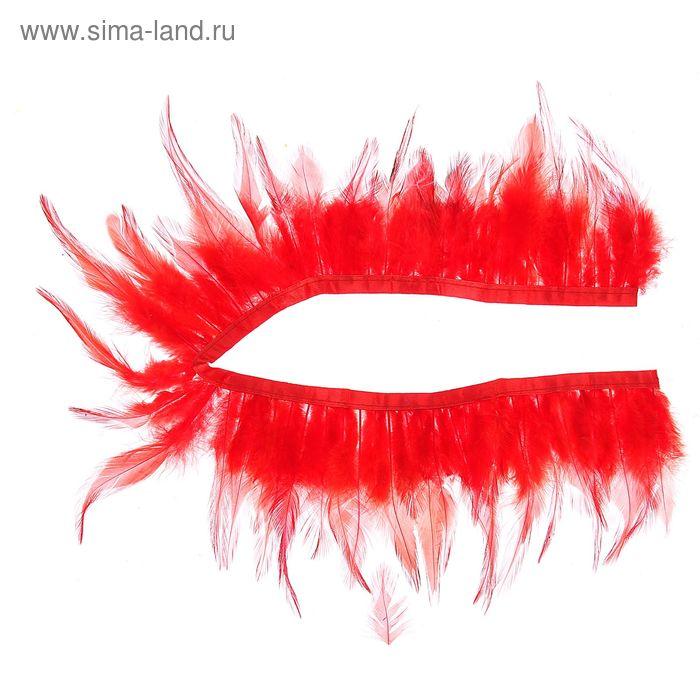 Лента перьев для декора, размер 1 шт 50*9 цвет красный